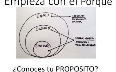 Visión empresarial: El Circulo Dorado de Simon Sinek